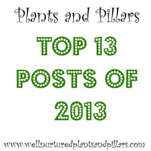 top 13