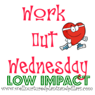 workout low impact